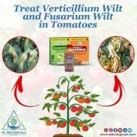IPL Biologicals leads Best Organic Fertilizer Company in India